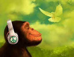 peaceof mind monkey