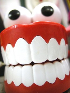 chompers-enokson-flickr